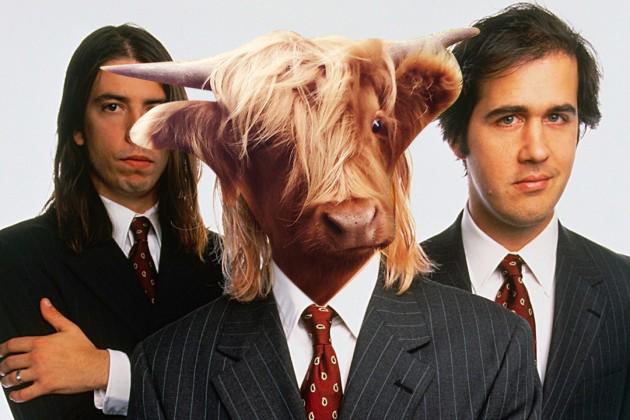 kurt-cobain-cow-cobain